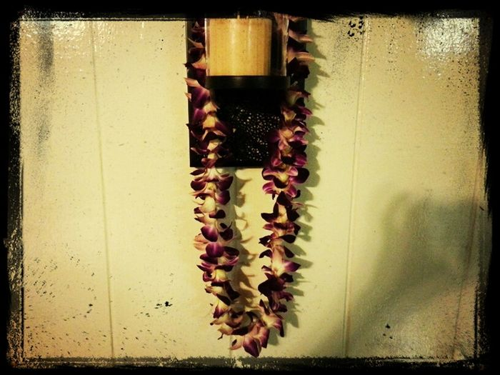 Lei From My Love