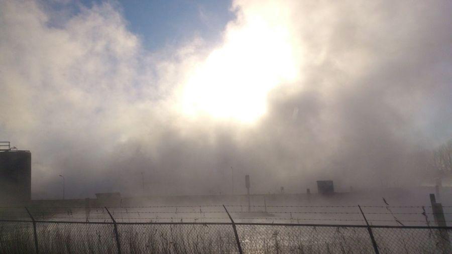 Fog Sugar Factory