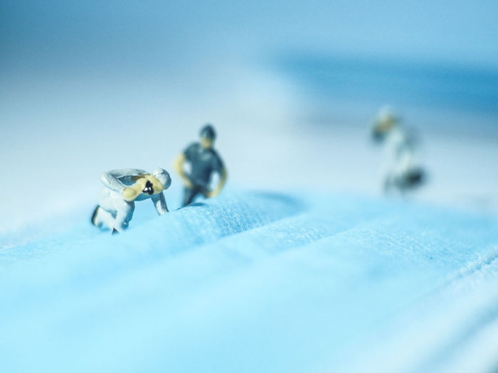 Close-up of insect on blue background