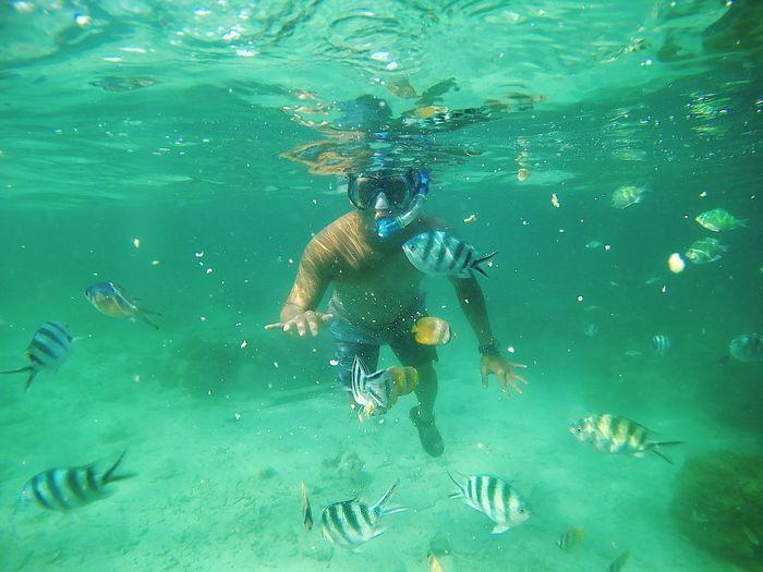 Man and fish swimming in sea