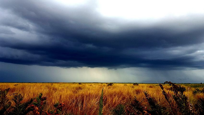 Storm Cloud Remote Cloudscape Rural Scene Nature Solitude Beauty In Nature Tranquil Scene Landscape Scenics Tranquility Field Everglades  Florida Florida Storm Thunderstorm Angry Nature