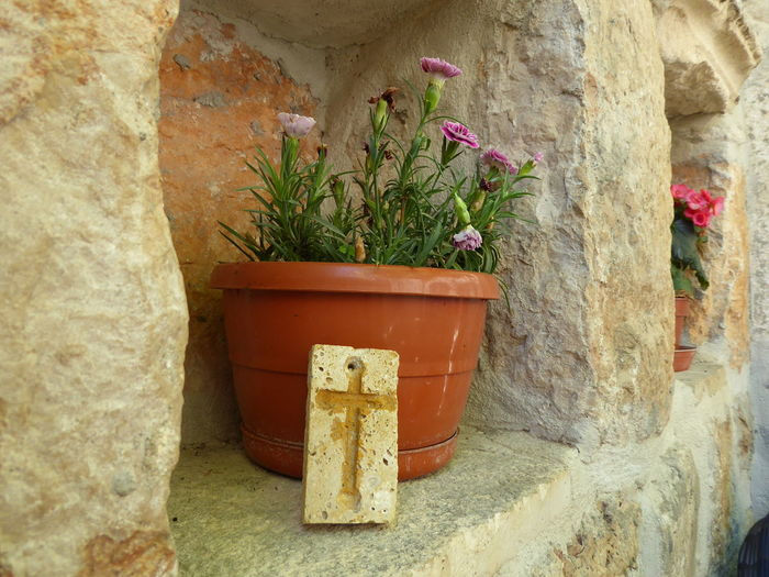 wall with decoration Wall Wall - Building Feature Alcoves Niche Crucifix Flower Potted Plant Plant Flower Pot