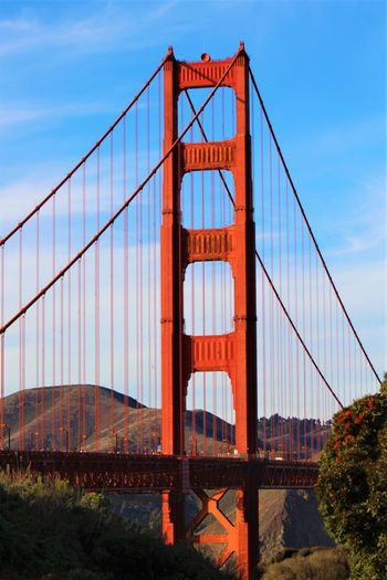 Golden Gate Bridge Canon Rebel T6 Blue Sky Green Trees Connection Outdoors Transportation Landscape City Steel Tourism