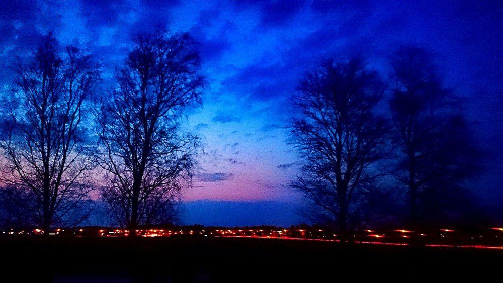 in to City Eskilstuna-streetphotography Sweden The True Story EyeEmNewHere Astronomy Tree Star - Space Galaxy Illuminated Blue Milky Way Sky