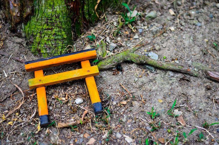 Travelphotography EyeEm Best Shots EyeEm Nature Lover Japan EyeEmBestPics Showcase March The Tourist Eyeemcollection EyeEm Gallery Summer Eyeem Collection Kyoto UltimateJapan Ultimate Japan