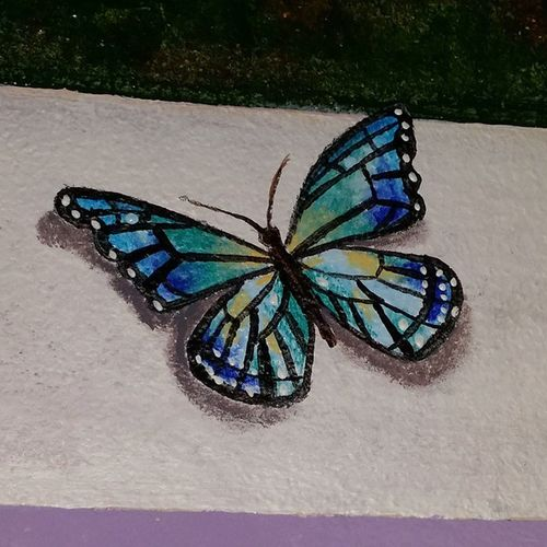 Trompe L'oele Butterfly and windowMural finished!