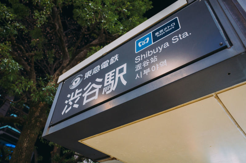 Low angle view of information sign against plants