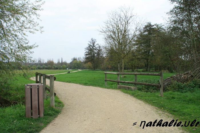 Photographie  Canon Eos 1000d 18-200mm Signatureshoot Paysage Taking Photos Chemin Chartres Nature