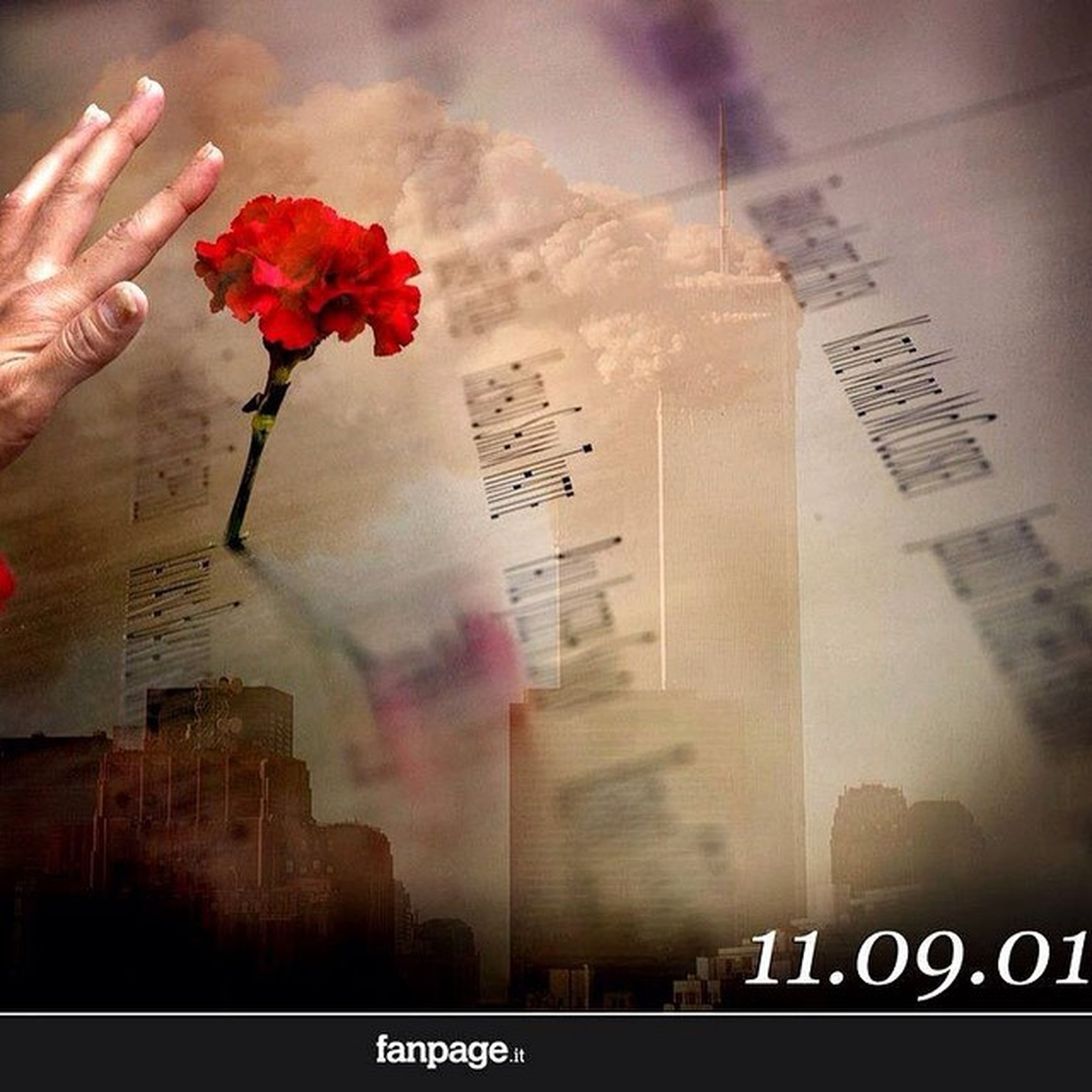 text, communication, western script, person, indoors, flower, part of, close-up, holding, paper, red, cropped, one person, non-western script, built structure, focus on foreground, architecture, glass - material, freshness, pink color