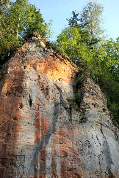 Beauty In Nature Cliff Day Eroded Geology Growth Low Angle View Natural Pattern Nature No People Non-urban Scene Outdoors Physical Geography Rock Rock - Object Rock Formation Rocky Mountains Rough Scenics Sky Latvija Latvia Gauja National Park Nationalpark