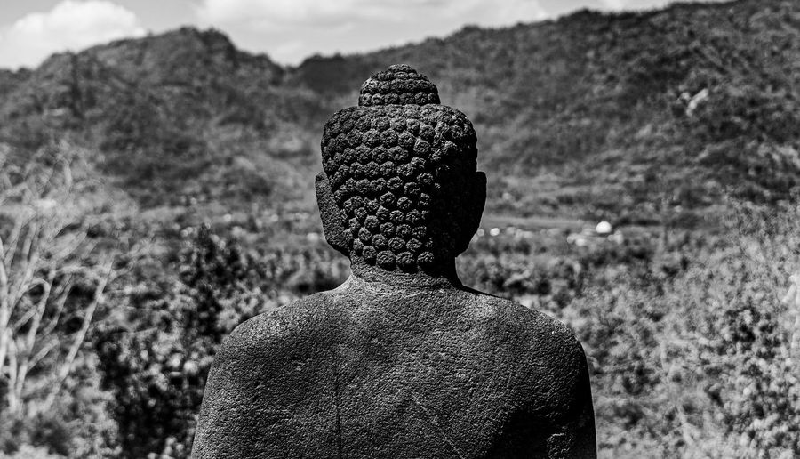 Rear view of a budhha statue