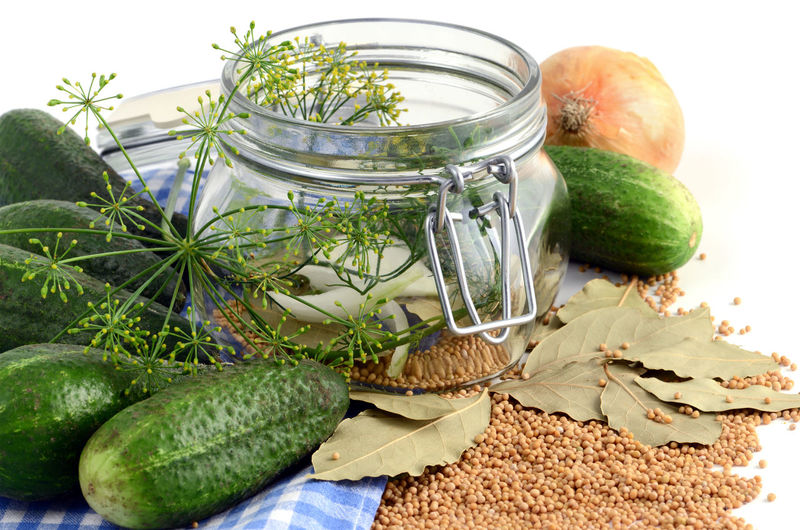 homemade cucumbers in jar glass with herbs like dill and onions. Food Food And Drink Freshness Healthy Eating Vegetable Saure Gurken Isolated Isolated White Background White Background Studio Shot Onion Onions Dill Herbs Einweckglas Glass Cucumber Jar Lorbeer Showcase: February