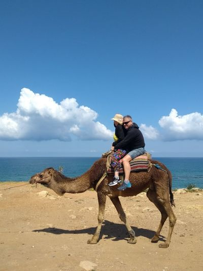 People riding camel at beach against sky