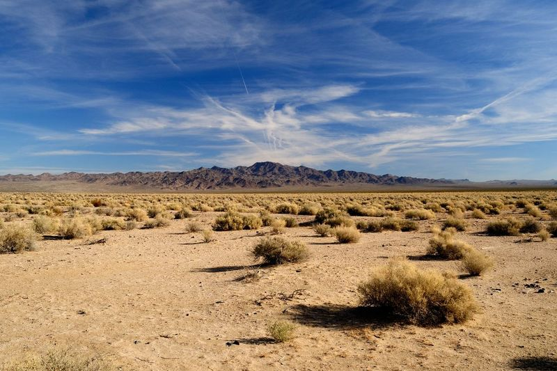 Endless Desert Desert Sky And Clouds United States Arid Climate Beauty In Nature Cloud - Sky Day Desert Sky Landscape Mountain Nature No People Outdoors Scenics Sky Tranquil Scene Tranquility California Dreamin