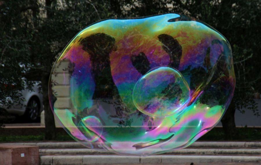 Calorful Reflection Seifenblase Tree Big Bubble Bubble Day Fragility
