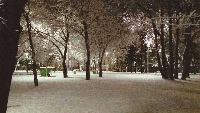 Walking Around First Snow