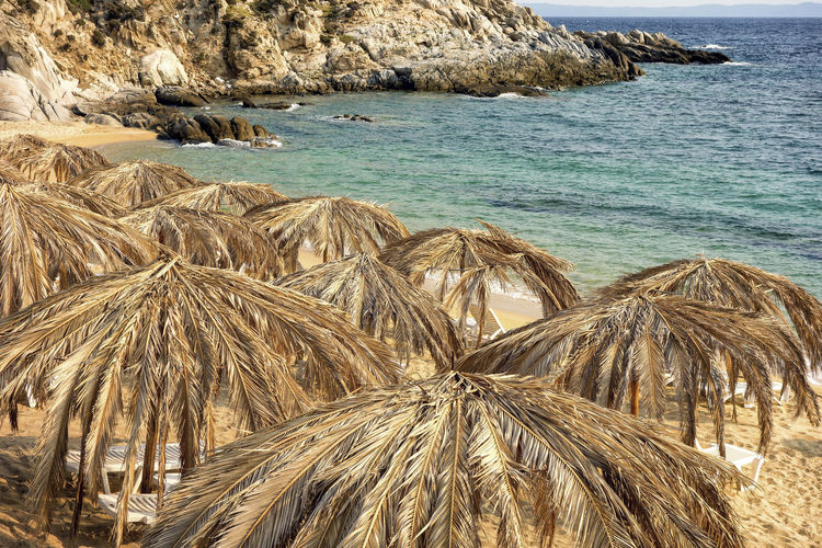 Dry coconut sunshades on the beach. Empty Beach Holiday Tranquility Beach Coconut Tree Leafs Day Dry Coconut Leaves Natural Sunshade Natural Umbrella Natural Umbrellas No People Summer Sun Protection Sunshade Sunshades Tranquil Scene Umbrella Umbrellas