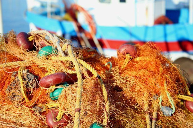 Seaside Peche Port Sea Life Seaworld See Sea_collection Mer Fishing Boat