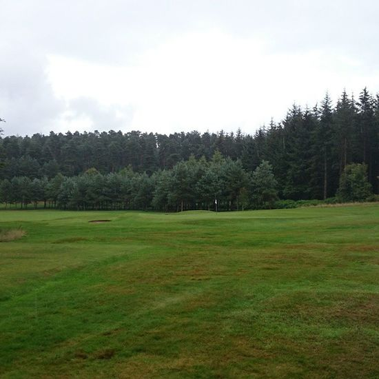 Dad's golf course Forest Golf Green Fairway Outdoors Bunker Penrith Cumbria Rain Walking Dog