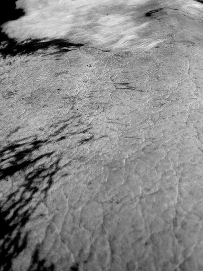 Maximum Closeness Leather Blackandwhite Landscape Desert Illusion