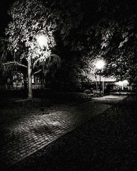 Midnight in Asti piedmont italy Ig_asti_ Gardeninthenight Ig_biancoenero _world_in_bw Dsb_noir Eranoir Bnwitalian  Excellent_bnw Ig_worldbnw Vivobnw Igclub_bnw Loves_noir Igs_bnw Ig_contrast_bnw Master_in_bnw Top_bnw Tv_pointofview_bnw Loves_united_asti Ig_italia_ Ig_captures Night Garden Featuredmeinstagood Vscosociety Photowall allshots_ hot_shotz phototag_it visualsoflife shadow