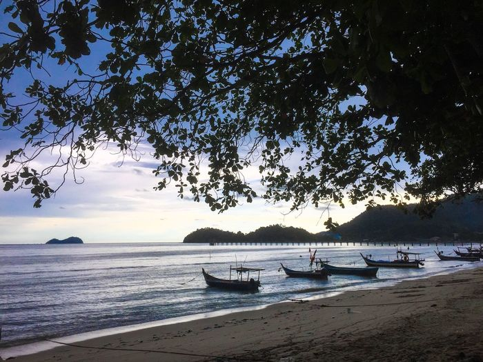 Scenic view of wooden boats moored on beach