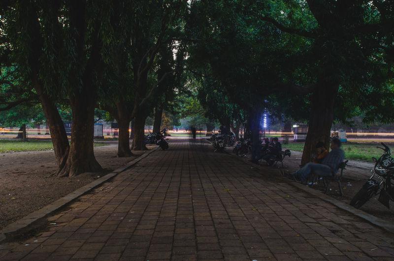 ISO100 22mm f/18 30s Tree The Way Forward Outdoors Night Full Length Beauty In Nature Nature City Nightphotography Light Trail Long Exposure Delayed Nikonphotography Nikon D7000 Kolkata Victoria Memorial