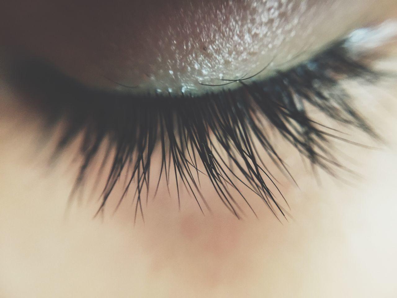 Macro shot of closed eye