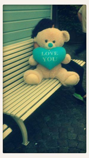 Ilu Teddy