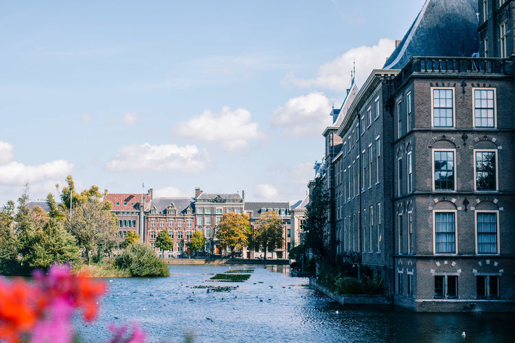 The Hague Water Reflections Architecture Binnenhof Building Building Exterior Built Structure City Cloud - Sky Day Flower Flowering Plant Flowers House Nature No People Outdoors Plant Politics And Government Residential District River Sky Water Waterfall Waterfront