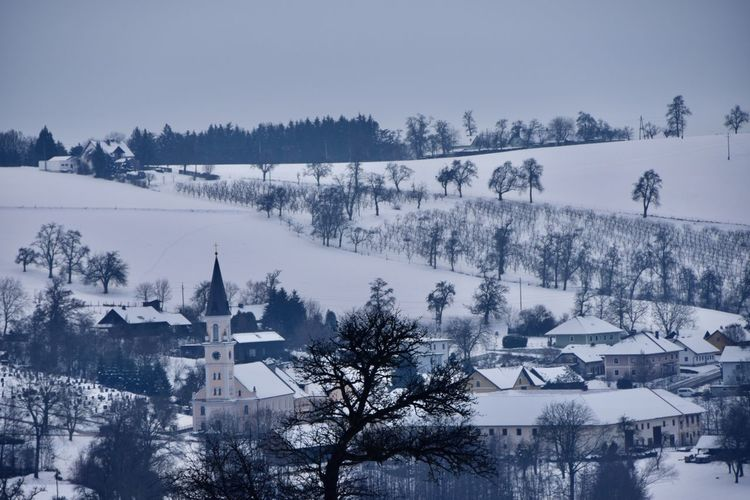 Panoramic view of trees and buildings against sky during winter