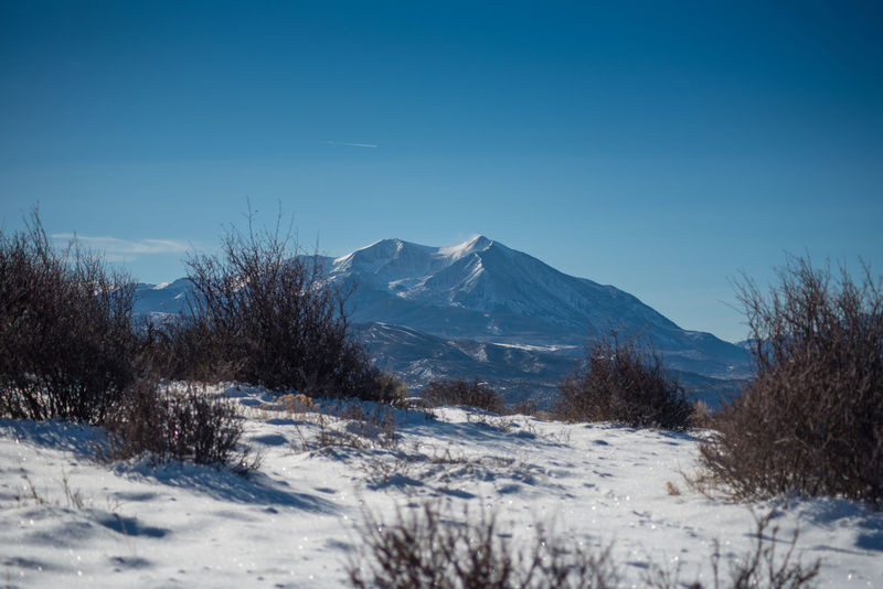 Hiking with Mount Sopris as the view Hiking Mount Sopris Beauty In Nature Clear Sky Day Landscape Mountain Nature No People Outdoors Scenics Snow Tranquil Scene Tranquility Winter
