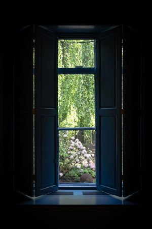 Amsterdam Huis Marseille Architecture Building Built Structure Dark Day Door Entrance Glass Glass - Material Green Color Growth House Indoors  Nature No People Open Plant Transparent Tree Window Window Frame Window Sill Window View