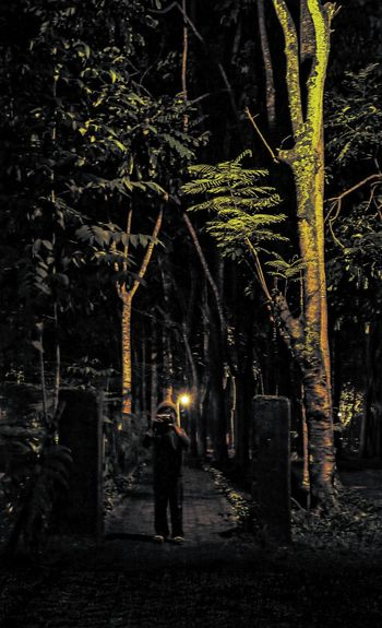 Pursuit by time Night Nightphotography Forest Kid Alone Standing Darkness And Light Tree Boy