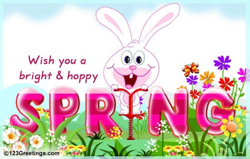 Happy first day of spring everyone😃😍☁️🐰🌻🍃🌺🌿🌾🌸🌼🍃🌷🌹🍃💐😉