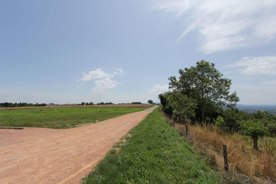 Auvergne Vichy Landscape Landscape_Collection