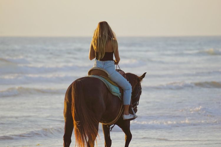 Rear view of person riding horse on beach