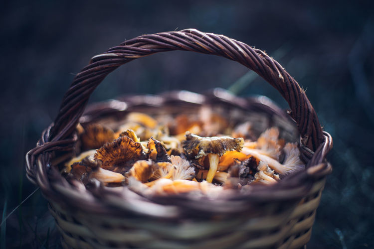 Close-up of mushrooms in basket