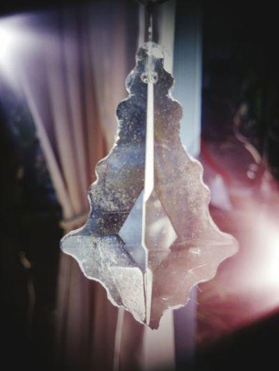 Chrystal Backyardphotography Intricate Photography Reflections