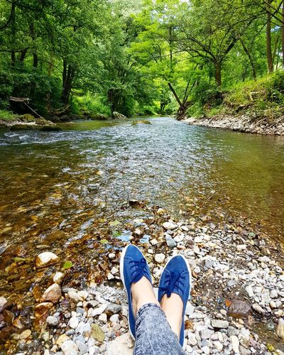 That's Me Hanging Out Enjoying Life Relaxing Nature Photography Nature Landscape Magicnature Nature_collection Waterscape Green River River View Riverscape Forest