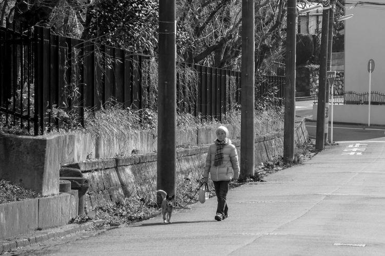 Bw Dog Lifestyles Outdoors Senior Adult Streetphotography Walking
