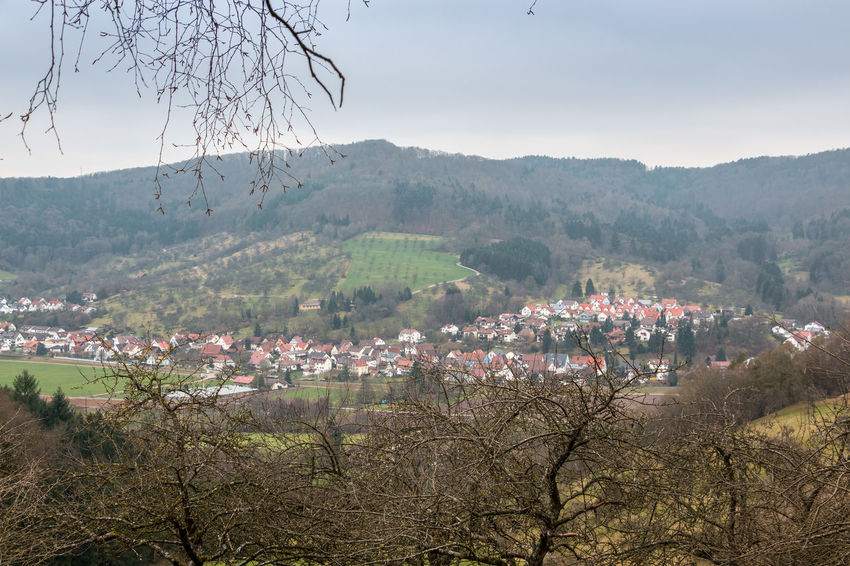 Little village down the valley with fields and forest Deutschland Dorf Feld Field Hills Meadowlands Stadt Waldkirch Wiesen Und Wälder Wiesenschaumkraut Zivilisation Fields Forest Trees Forests Germany Hügel Landleben Meadows And Fields Meadowsweet Town Village Wald Wiesenblumen