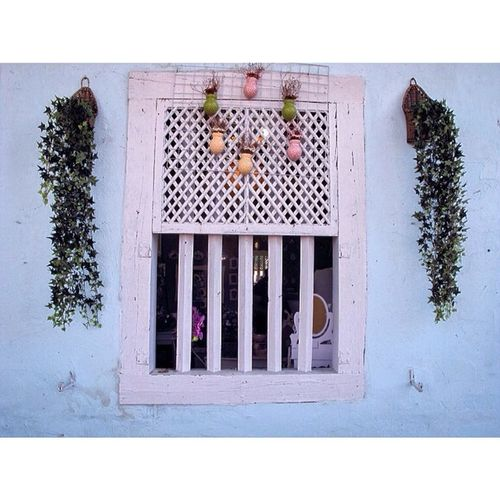 more windows, kinda obsession. Igaddict Instagood Infamous_family Street Sundoors Streetphoto Streetphotography