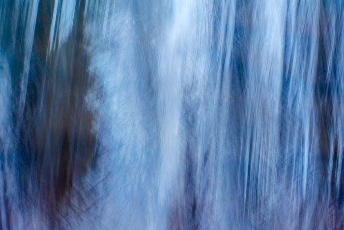 Abstract Forest Sachsenwald Backgrounds Full Frame Pattern Blurred Motion No People Abstract Backgrounds Motion Blue Nature Close-up Cloud - Sky Textured  Day Refraction White Color Sky Scenics - Nature Outdoors Gray Silver Colored
