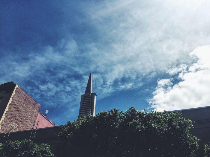 TransAmericaBuilding Transamerica Pyramid San Francisco Architecture Sky