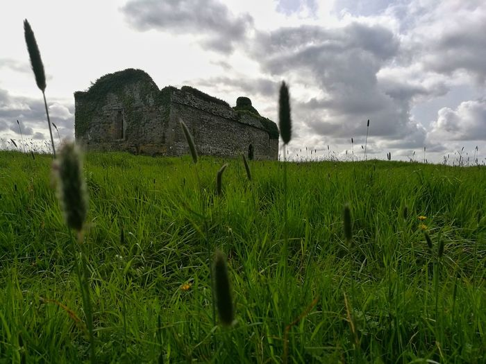 Cloud - Sky Grass Green Color Field Growth Outdoors No People Nature Sky Day Rural Scene Old Ruin Green Green Green!  Kerry Ireland Wild Atlantic Way Ancient Ireland