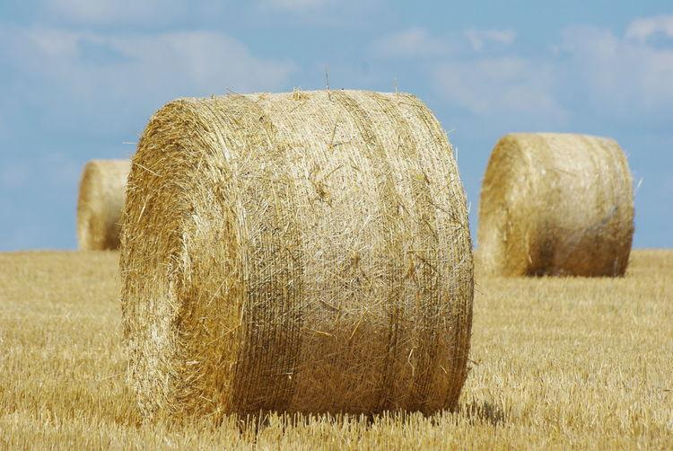 Hay Bales On Grassy Field Against Sky