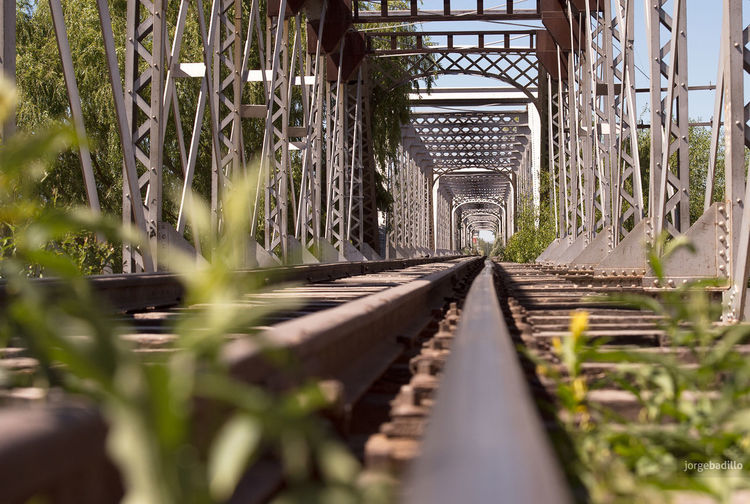 Rail Transportation Railroad Track Track Plant The Way Forward No People Nature Direction Selective Focus Diminishing Perspective Day Growth Metal Transportation Architecture Built Structure Focus On Background Outdoors Connection Surface Level