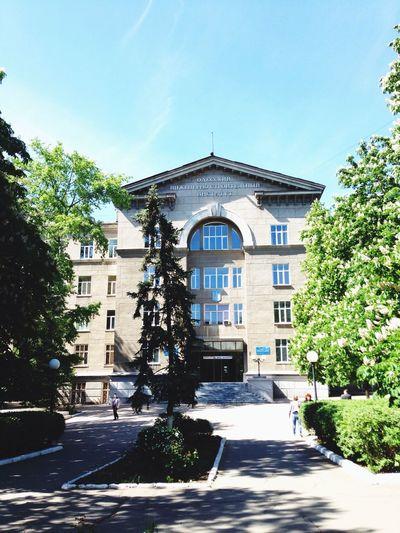 Моя Университете