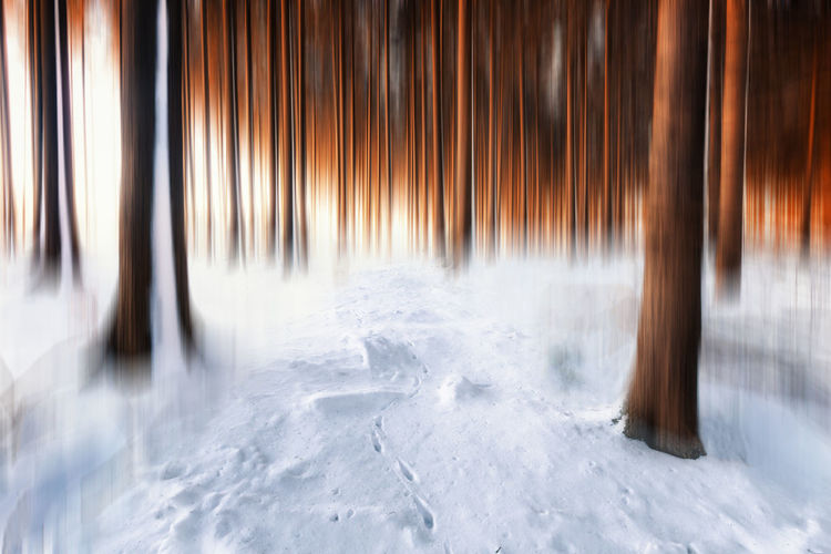 Winter Cold Temperature Snow Motion Environment No People Nature Scenics - Nature Landscape Long Exposure Land Forest Panoramic Abstract Blurred Motion Tree Outdoors Tranquility Beauty In Nature Icicle Snowing Harzmountains